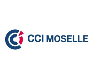 Isabelle Fettu est intervenue pour la CCI de la Moselle: formation et conseil en stratégie de communication pour dirigeants de PME-PMI, Lorraine, Grand Est